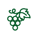 Grape Vine Icon